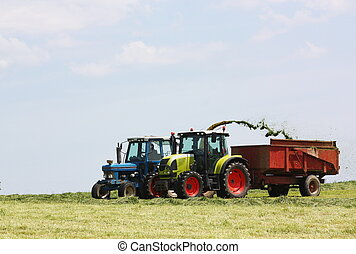 Two tractors chopping and harvesting silage for winter animal feed.