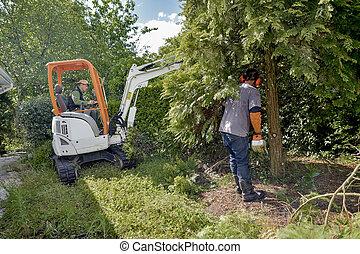 Chopping down a tree