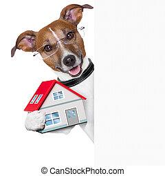chorągiew, pies, dom, i, klucz