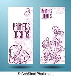 chorągiew, projektować, orchidee