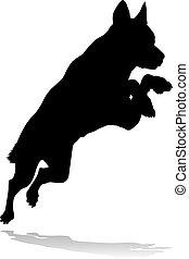 chouchou, animal, silhouette, chien