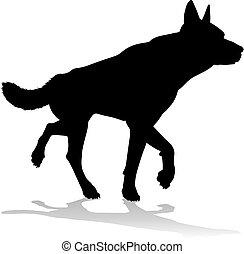 chouchou, chien, silhouette, animal