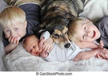 chouchou, chien, trois, lit, blottir, jeunes enfants, heureux