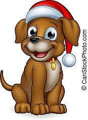 chouchou, claus, chien, santa chapeau, noël