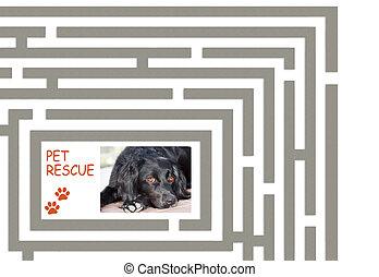 chouchou, labyrinthe, 2, secours