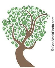 chouchou, pattes, arbre