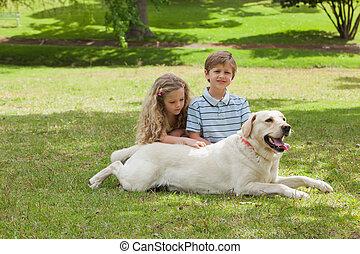 chouchou, portrait, gosses, parc, chien