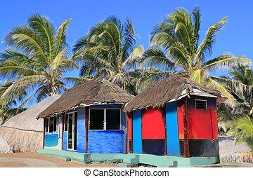 choza, colorido, palapa, árboles, tropical, palma, cabaña