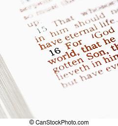 Christian Bible.