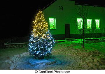 Christmas and new year fir tree night with illumination light