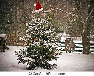Christmas animals.
