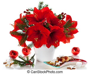 Christmas arrangement of amaryllis - red amaryllis in vase...