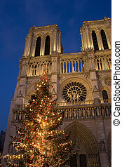 Christmas at Notre-Dame - A Christmas tree in front of...