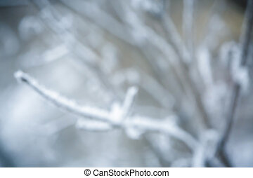 Christmas background, trees in frost. blurred