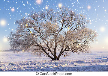 Christmas background. Winter nature landscape with glowing snowflakes. Winter scene of snowy tree with hoarfrost on branches on snow in clear sunny evening with warm sunlight. Beautiful winter.