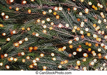 Christmas background with fir branches and blurred lights.
