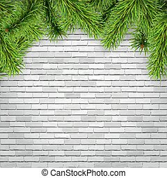 fir tree branches on a white brick