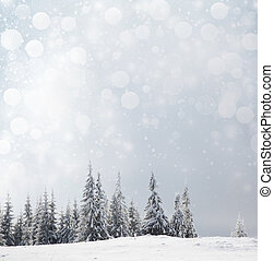 Christmas background with snowy fir