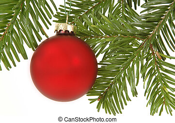 Christmas ball hanging in christmas tree