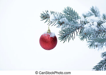 Christmas ball with pine branch - Closeup of Christmas ball...