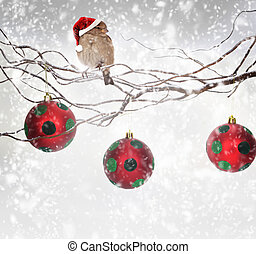 Christmas balls and sparrow bird with Santa Claus hat on snowy branch