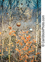 Christmas balls hanging on a branch of a birch in the winter forest