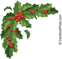 Christmas berry vector illustration. - European christmas...