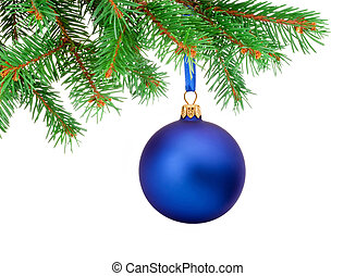 Christmas blue ball hanging on a fir tree branch Isolated on whi