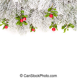 Christmas border with green Xmas tree twig and holly berries and leaves