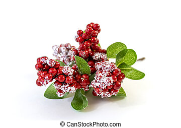 Christmas branch with berries under snow close-up