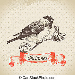 Christmas bullfinch and ashberry. Hand drawn illustration