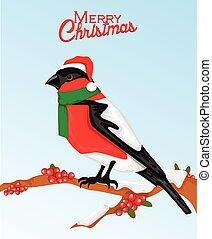 Christmas bullfinch bird in santa hat