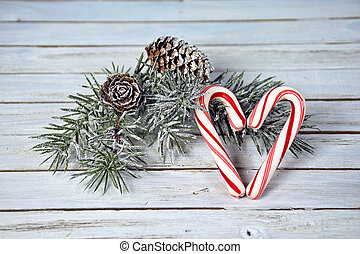 Christmas candy cane heart and pine - candy cane heart and...