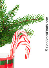 Christmas candy canes isolated on white, vertical