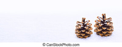 Pine cone in the snow.