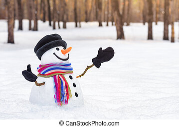 Christmas card with a funny snowman