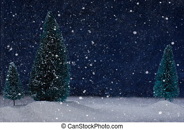 Christmas card with winter forest at night in the snow