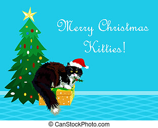 Christmas cat on a gift holding mistletoe and making wishes....