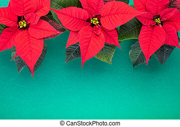 Christmas composition. Christmas green decorations, fir tree branches with red flowers on green background. Flat lay, top view, copy space