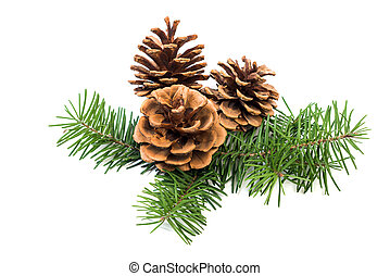 Christmas decoration pine cone bauble and fir tree branches ...