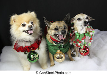 Christmas Dogs with Ornaments