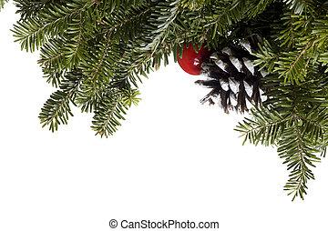 Christmas Evergreen decoration on white - Christmas...