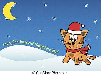Christmas festive cat on winter sno