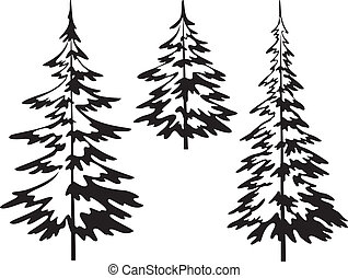Christmas fir tree, contours - Christmas fir trees, ...