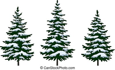 Christmas Fir Trees - Set Green Fir Trees with White and...