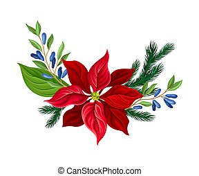 Christmas Flower Composition with Fir Tree Twig and Honeysuckle Branch Vector Illustration. Seasonal Decoration for Merry Holiday