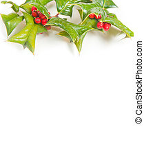 Christmas frame with holly berry