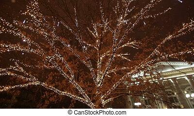 Christmas Garland on a tree