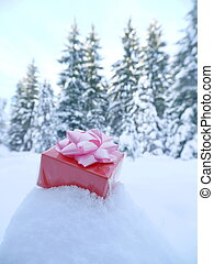 christmas gift in the snow
