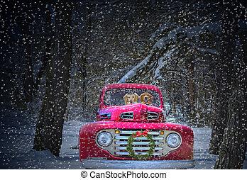 Christmas golden retrievers - Golden retriever in red...